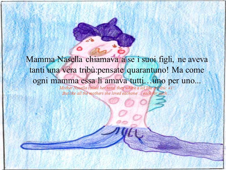 Mamma Nasella lì chiamo tutti a se, ma ne mancava uno….il piccolo Schitimiro ….allora con una perfetta virata si immerse a capofitto verso il fondo per cercarlo...