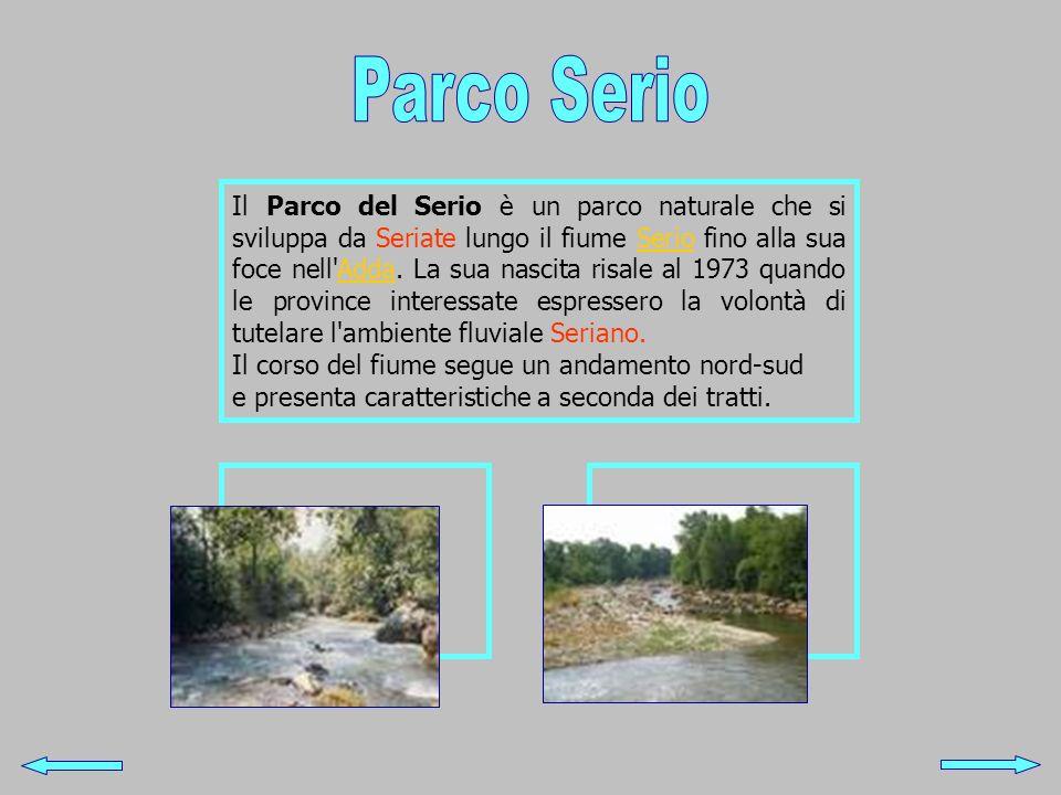 Il Parco del Serio è un parco naturale che si sviluppa da Seriate lungo il fiume Serio fino alla sua foce nell'Adda. La sua nascita risale al 1973 qua