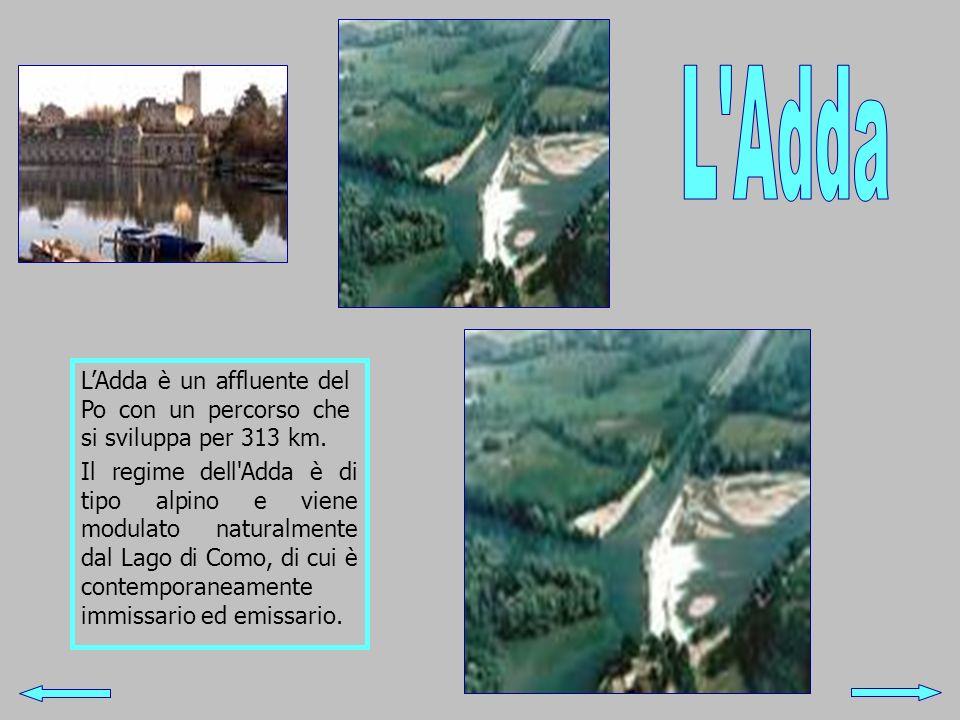 LAdda è un affluente del Po con un percorso che si sviluppa per 313 km. Il regime dell'Adda è di tipo alpino e viene modulato naturalmente dal Lago di
