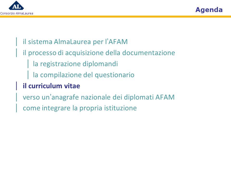 Agenda il sistema AlmaLaurea per lAFAM il processo di acquisizione della documentazione la registrazione diplomandi la compilazione del questionario i