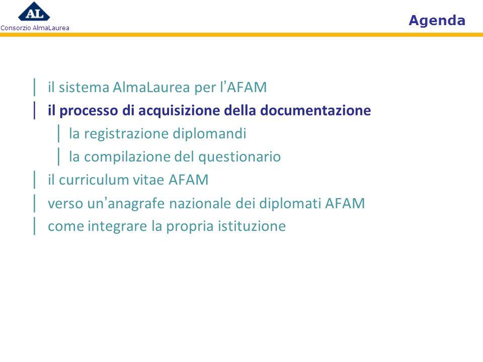 Agenda il sistema AlmaLaurea per lAFAM il processo di acquisizione della documentazione la registrazione diplomandi la compilazione del questionario il curriculum vitae verso unanagrafe nazionale dei diplomati AFAM come integrare la propria istituzione