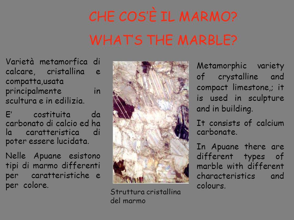 CHE COSÈ IL MARMO? WHATS THE MARBLE? Varietà metamorfica di calcare, cristallina e compatta,usata principalmente in scultura e in edilizia. E costitui
