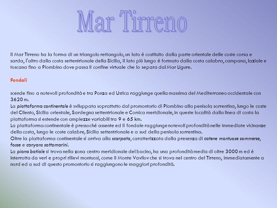 Il Mar Tirreno ha la forma di un triangolo rettangolo, un lato è costituito dalla parte orientale delle coste corsa e sarda, l'altro dalla costa sette