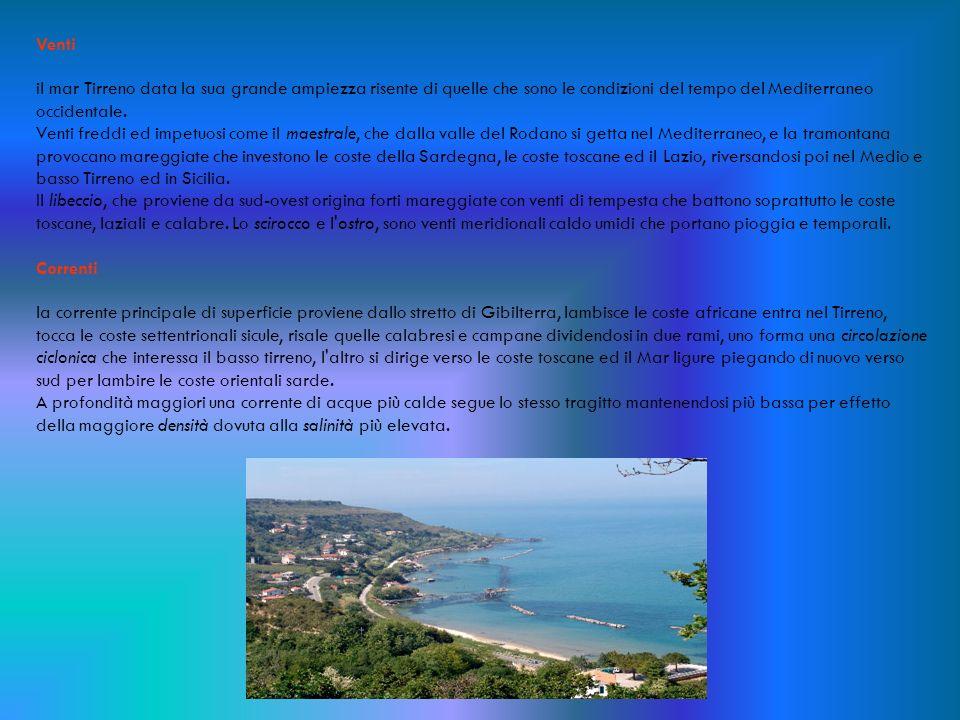 Venti il mar Tirreno data la sua grande ampiezza risente di quelle che sono le condizioni del tempo del Mediterraneo occidentale. Venti freddi ed impe