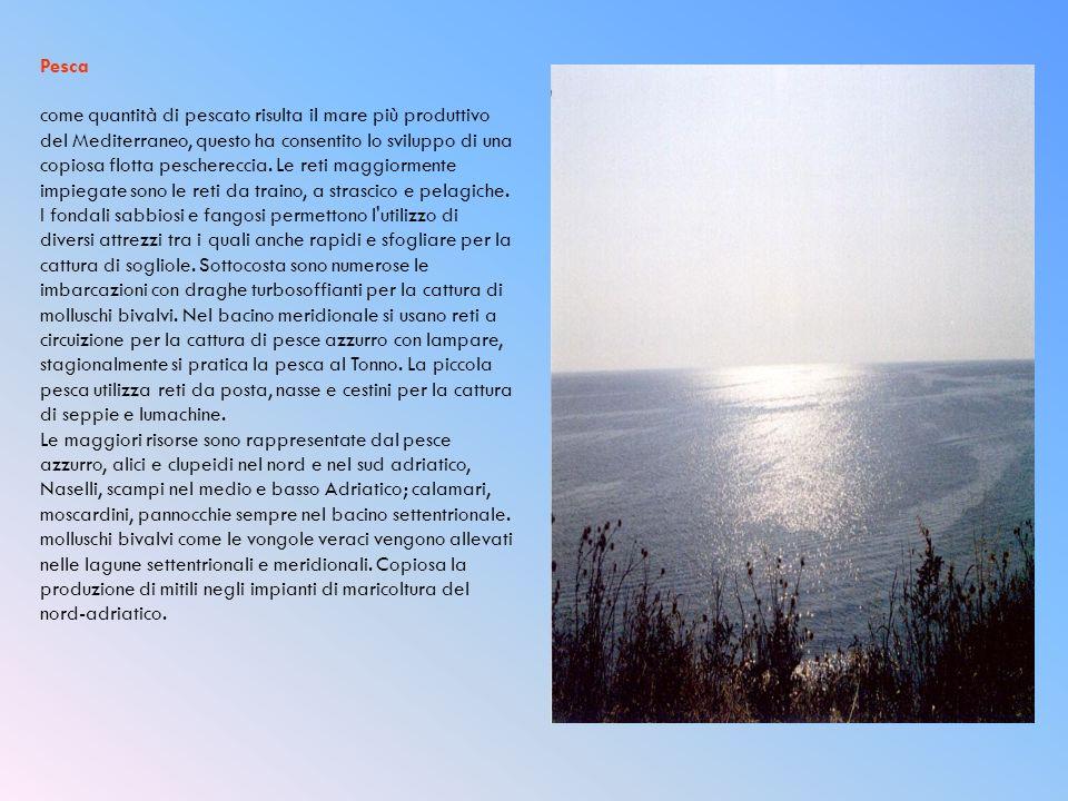 Pesca come quantità di pescato risulta il mare più produttivo del Mediterraneo, questo ha consentito lo sviluppo di una copiosa flotta peschereccia. L