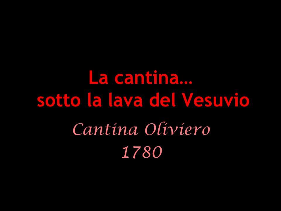 La cantina… sotto la lava del Vesuvio Cantina Oliviero 1780
