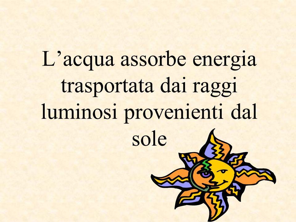 Lacqua assorbe energia trasportata dai raggi luminosi provenienti dal sole