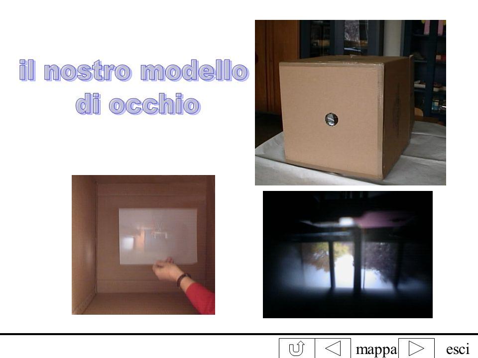 mappaesciLocchio Per capire come funziona locchio abbiamo creato un modello abbiamo preso uno scatolone, fatto un buco su una faccia dello scatolone (