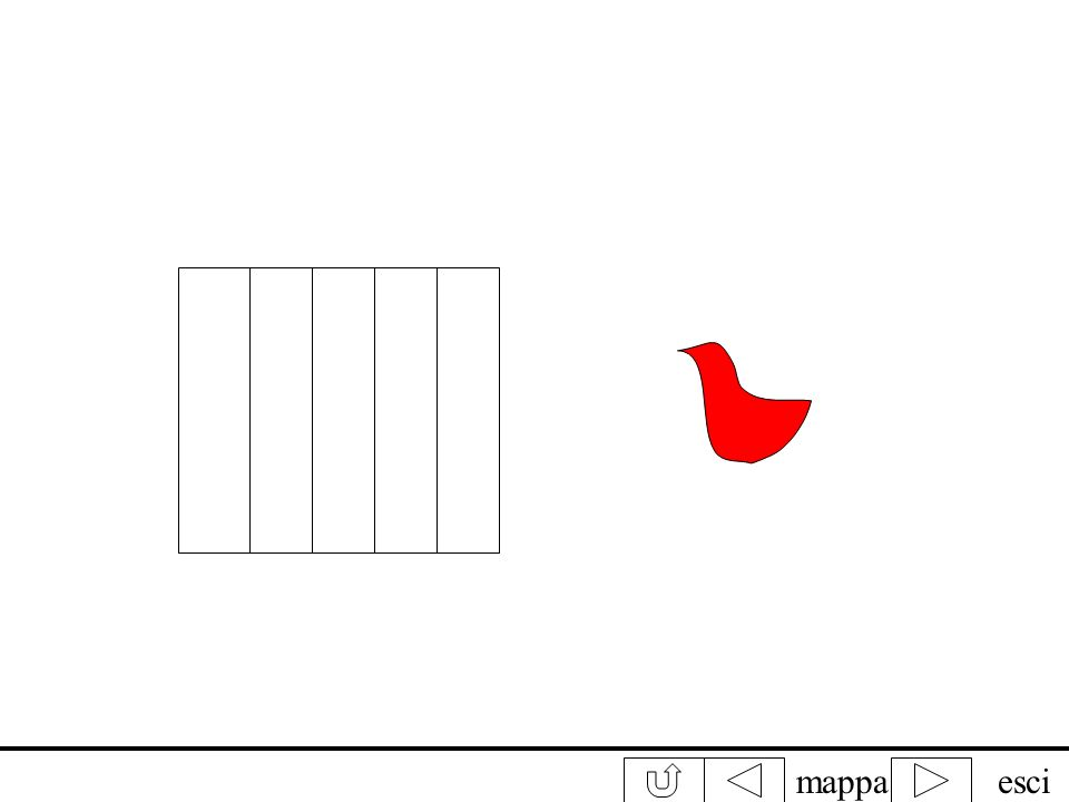 mappaesci Fissa attentamente luccello rosso contando fino a 30. Subito dopo sposta lo sguardo sulla gabbietta. Che cosa vedi?