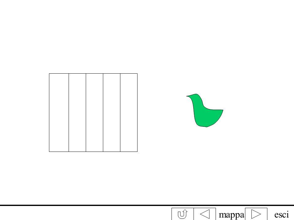 mappaesci Fissa attentamente luccello verde contando fino a 30. Subito dopo sposta lo sguardo sulla gabbietta. Che cosa vedi?