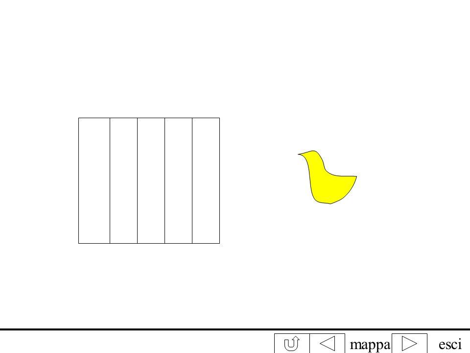 mappaesci Fissa attentamente luccello giallo contando fino a 30. Subito dopo sposta lo sguardo sulla gabbietta. Che cosa vedi?