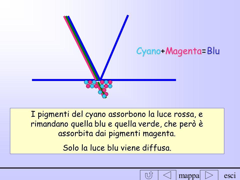 mappaesci Cyano+Giallo=verde I pigmenti del cyano assorbono la luce rossa, e rimandano quella verde e quella blu, che però è assorbita dai pigmenti gi