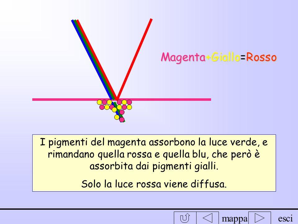 mappaesci Cyano+Magenta=Blu I pigmenti del cyano assorbono la luce rossa, e rimandano quella blu e quella verde, che però è assorbita dai pigmenti mag