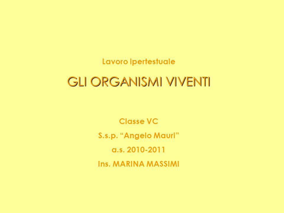 Lavoro ipertestuale GLI ORGANISMI VIVENTI Classe VC S.s.p. Angelo Mauri a.s. 2010-2011 Ins. MARINA MASSIMI