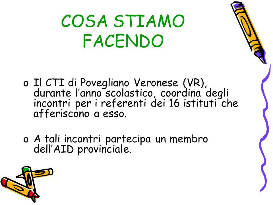 COSA STIAMO FACENDO oIl CTI di Povegliano Veronese (VR), durante lanno scolastico, coordina degli incontri per i referenti dei 16 istituti che afferis