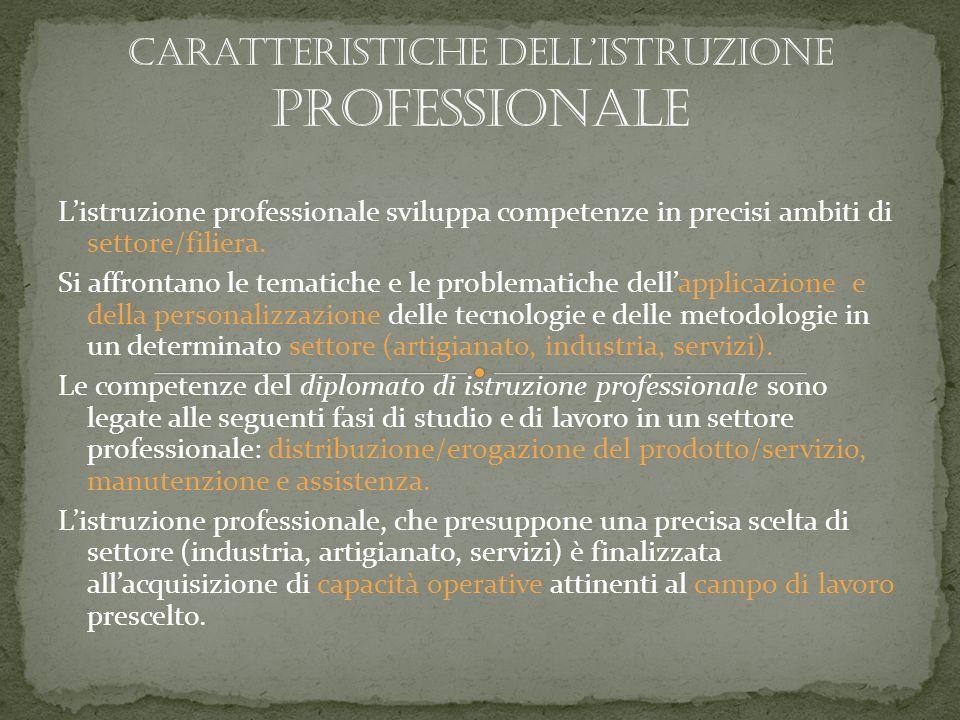 Listruzione professionale sviluppa competenze in precisi ambiti di settore/filiera.