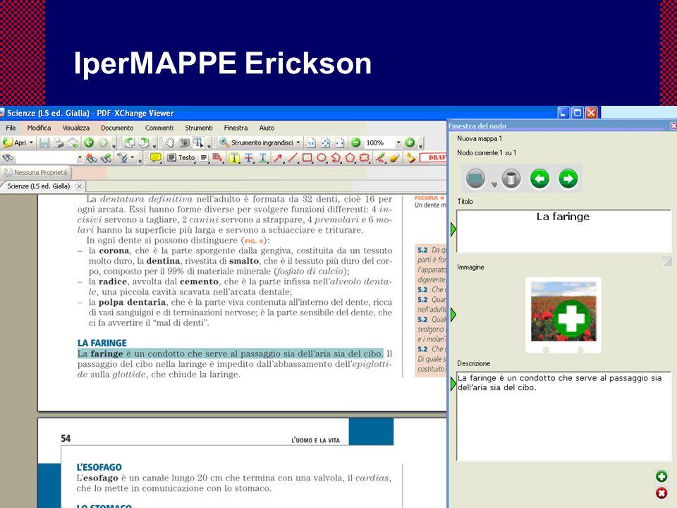 53 Flavio Fogarolo IperMAPPE Erickson