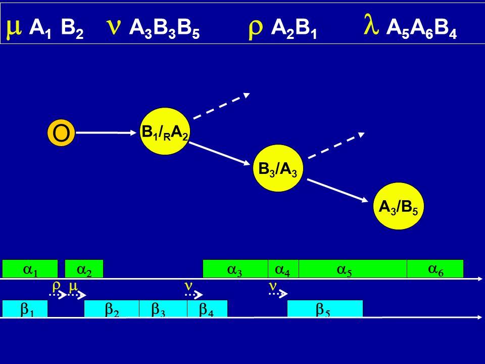 A 1 B 2 A 3 B 3 B 5 A 2 B 1 A 5 A 6 B 4 O B1/RA2B1/RA2 B 3 /A 3 A 3 /B 5