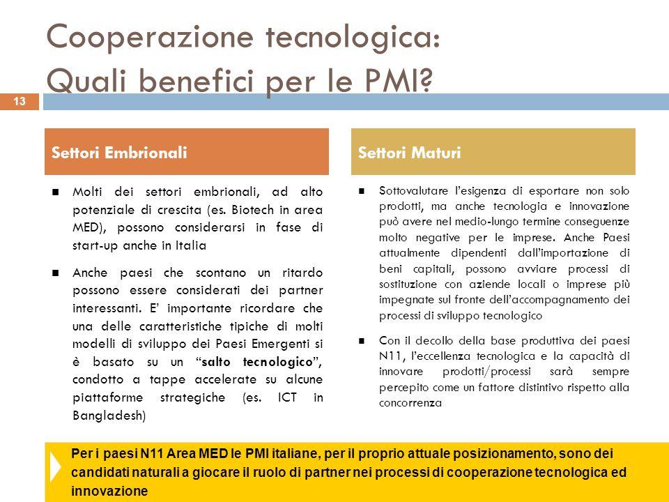 Per i paesi N11 Area MED le PMI italiane, per il proprio attuale posizionamento, sono dei candidati naturali a giocare il ruolo di partner nei process