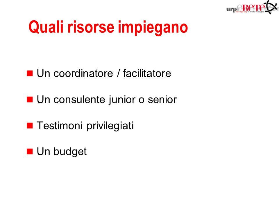 Quali risorse impiegano n Un coordinatore / facilitatore n Un consulente junior o senior n Testimoni privilegiati n Un budget