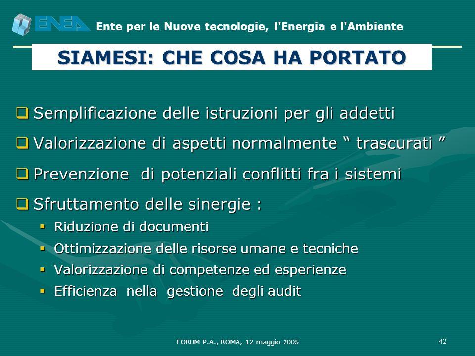 Ente per le Nuove tecnologie, l'Energia e l'Ambiente FORUM P.A., ROMA, 12 maggio 2005 42 SIAMESI: CHE COSA HA PORTATO Semplificazione delle istruzioni