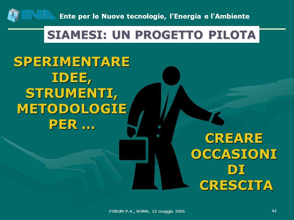 Ente per le Nuove tecnologie, l'Energia e l'Ambiente FORUM P.A., ROMA, 12 maggio 2005 44 SPERIMENTARE IDEE, STRUMENTI, METODOLOGIE PER … CREARE OCCASI