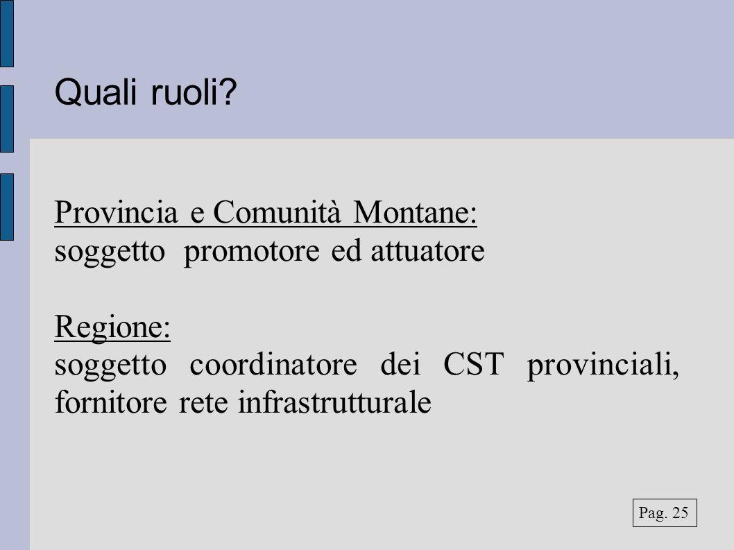 Quali ruoli? Provincia e Comunità Montane: soggetto promotore ed attuatore Regione: soggetto coordinatore dei CST provinciali, fornitore rete infrastr