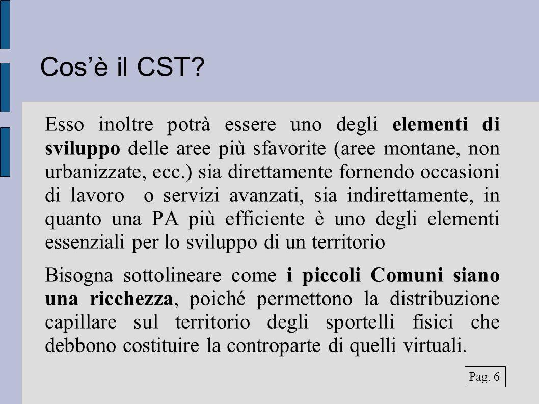 Il risultato dell indagine Servizi avanzati: Consulenza e gestione SIT Consulenza e gestione catasto Gestione tributi Riscossione tributi Pag.