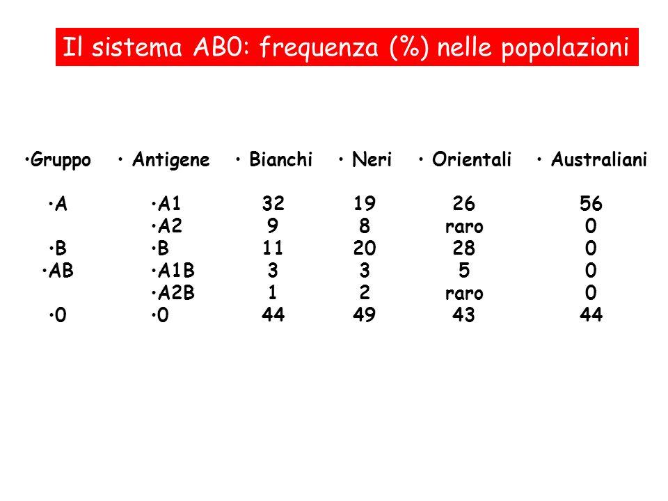 Il sistema AB0: frequenza (%) nelle popolazioni Antigene A1 A2 B A1B A2B 0 Neri 19 8 20 3 2 49 Gruppo A B AB 0 Bianchi 32 9 11 3 1 44 Orientali 26 rar