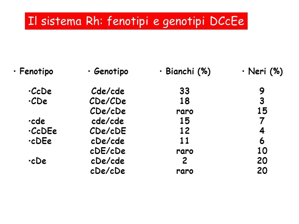 Il sistema Rh: fenotipi e genotipi DCcEe Fenotipo CcDe CDe cde CcDEe cDEe cDe Genotipo Cde/cde CDe/CDe CDe/cDe cde/cde CDe/cDE cDe/cde cDE/cDe cDe/cde