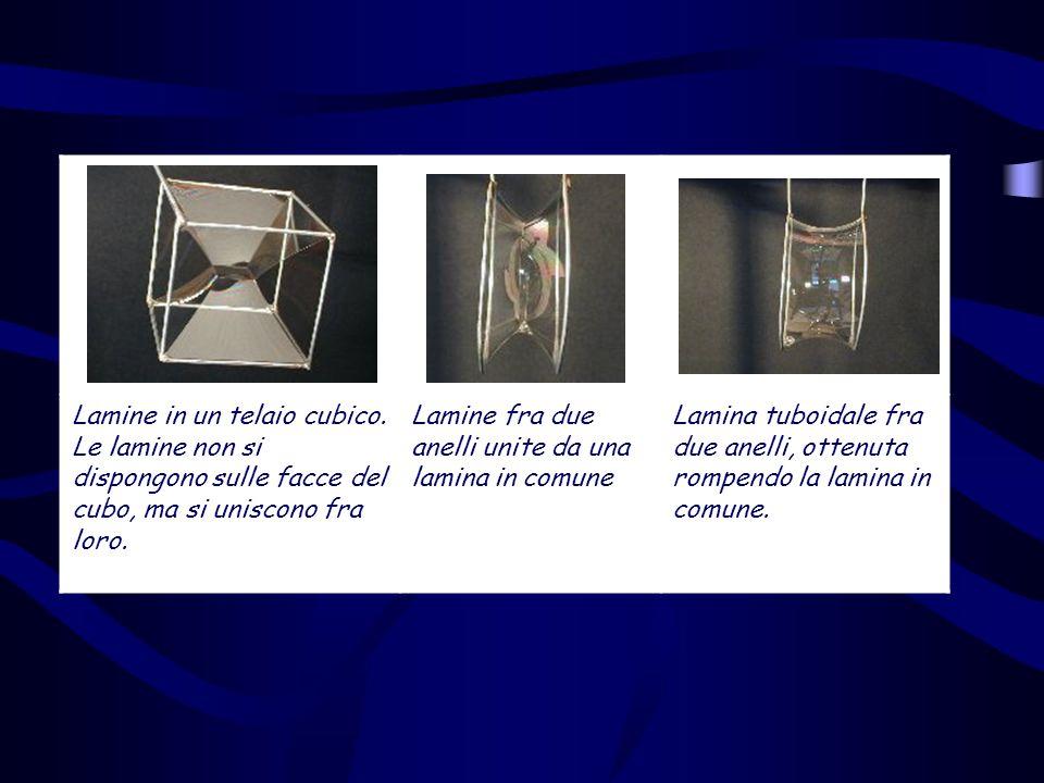 Lamine in un telaio cubico. Le lamine non si dispongono sulle facce del cubo, ma si uniscono fra loro. Lamine fra due anelli unite da una lamina in co