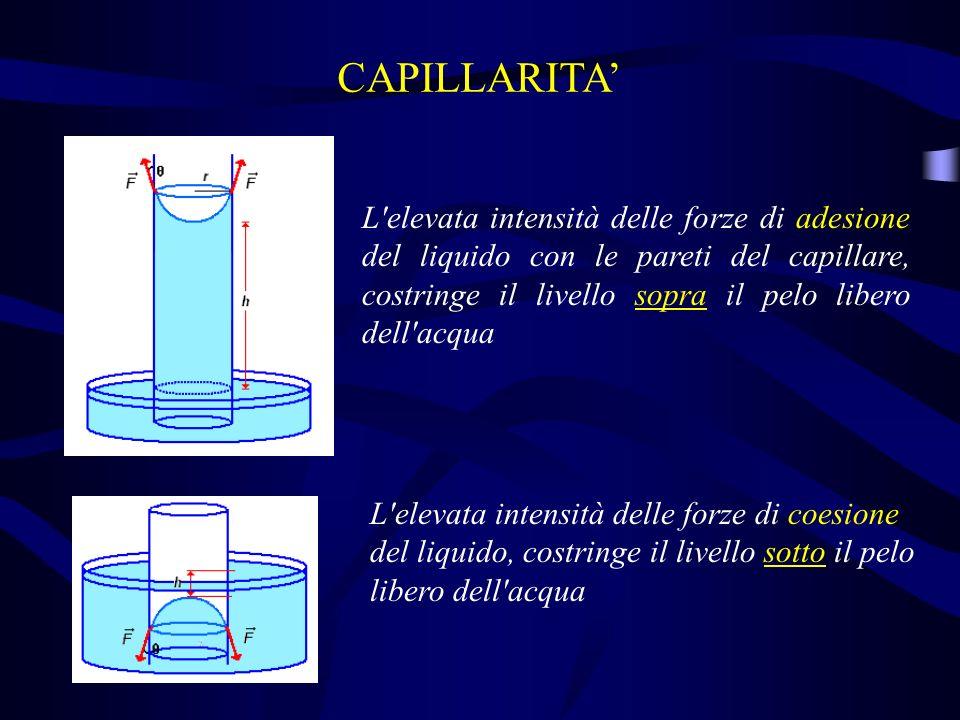 CAPILLARITA L'elevata intensità delle forze di adesione del liquido con le pareti del capillare, costringe il livello sopra il pelo libero dell'acqua