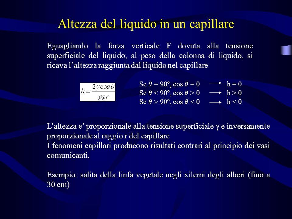Altezza del liquido in un capillare Eguagliando la forza verticale F dovuta alla tensione superficiale del liquido, al peso della colonna di liquido,