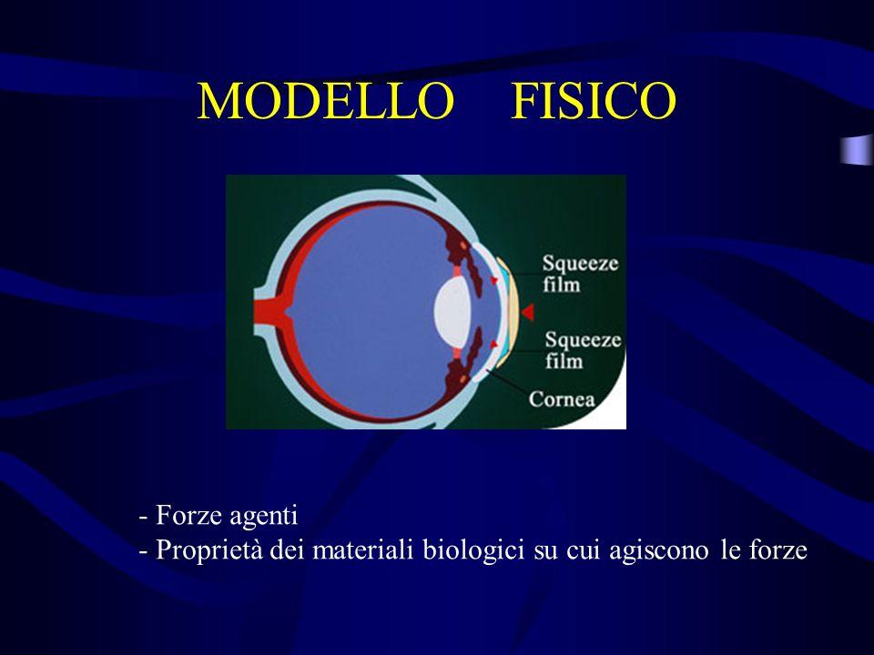 MODELLO FISICO - Forze agenti - Proprietà dei materiali biologici su cui agiscono le forze