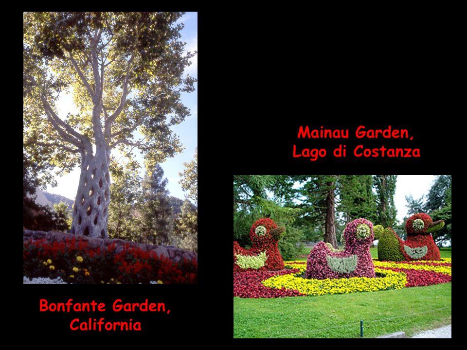 Bonfante Garden, California Mainau Garden, Lago di Costanza
