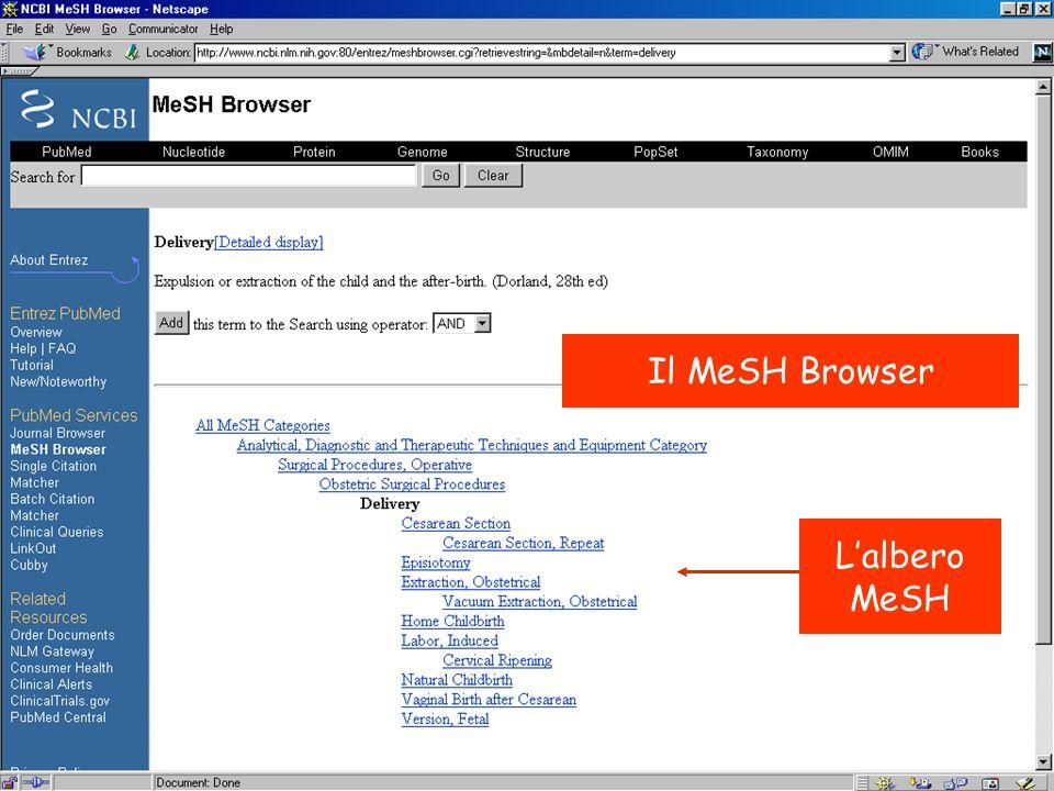 Il MeSH Browser Lalbero MeSH