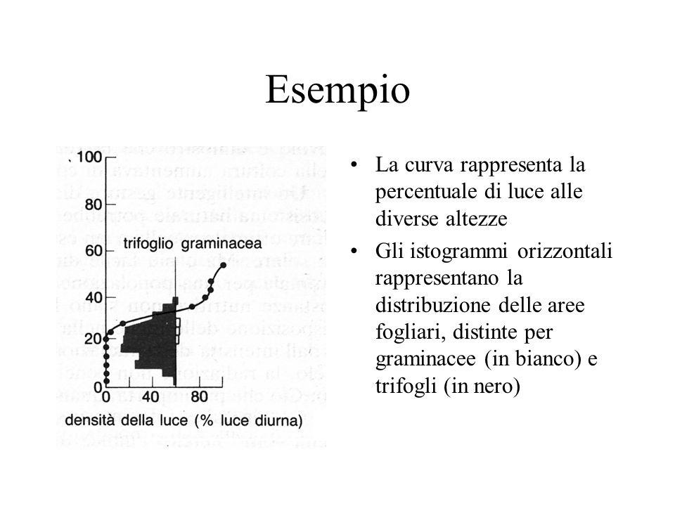 Esempio La curva rappresenta la percentuale di luce alle diverse altezze Gli istogrammi orizzontali rappresentano la distribuzione delle aree fogliari, distinte per graminacee (in bianco) e trifogli (in nero)