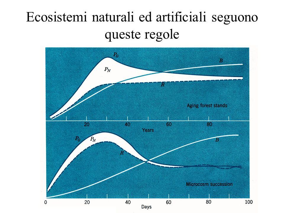 Ecosistemi naturali ed artificiali seguono queste regole