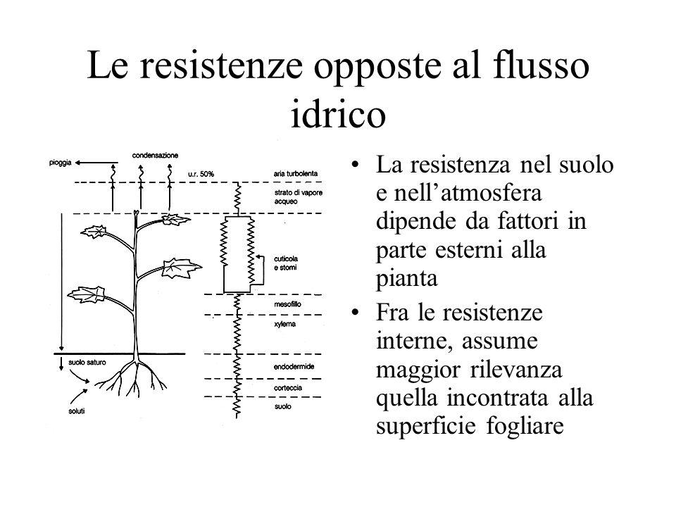 Le resistenze opposte al flusso idrico La resistenza nel suolo e nellatmosfera dipende da fattori in parte esterni alla pianta Fra le resistenze interne, assume maggior rilevanza quella incontrata alla superficie fogliare