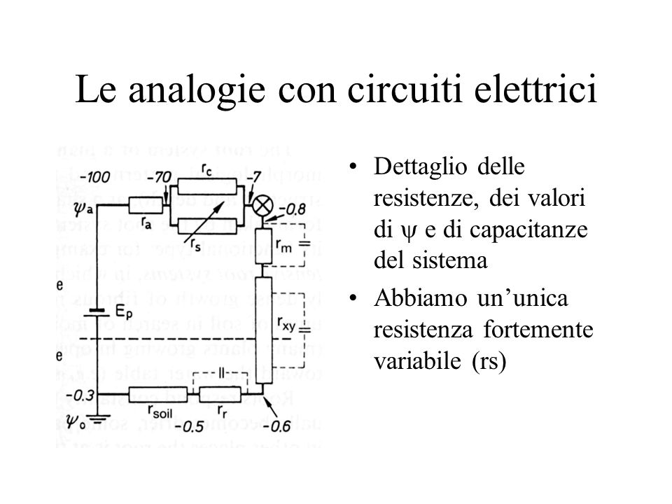 Le analogie con circuiti elettrici Dettaglio delle resistenze, dei valori di e di capacitanze del sistema Abbiamo ununica resistenza fortemente variabile (rs)