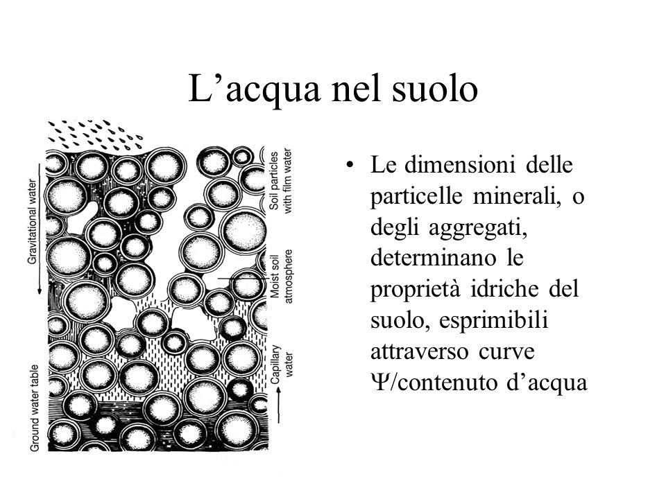Lacqua nel suolo Le dimensioni delle particelle minerali, o degli aggregati, determinano le proprietà idriche del suolo, esprimibili attraverso curve /contenuto dacqua