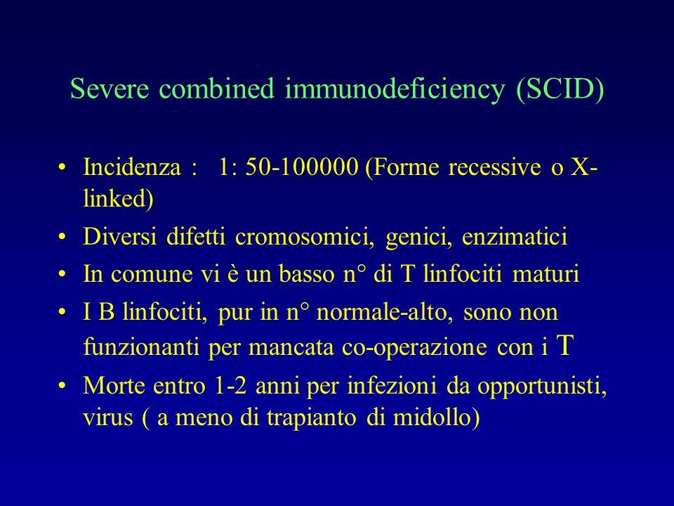 Caratteristiche del difetto dei T linfociti nella SCID Più frequente (50-60 %): Mutazioni nel gene che codifica IL-2 R catena (che è in comune con il recettore di numerose citochine, IL-4, IL-7, IL-9, IL-15, indispensabili per la maturazione dei T linfociti) Deficit di ADA (accumulo di adenosina tossica per i linfociti immaturi)