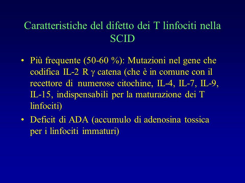 Diagnosi di SCID Infezioni precoci respiratorie e intestinali : polmonite interstiziale da PC, diarrea, candidiasi orale intrattabile Infezioni da Aspergillo Infezioni da germi intracellulari: Listeria, Legionella Conseguenze catastrofiche di vaccinazioni con vaccini vivi GVHD in seguito a trasfusioni (da evitare !)