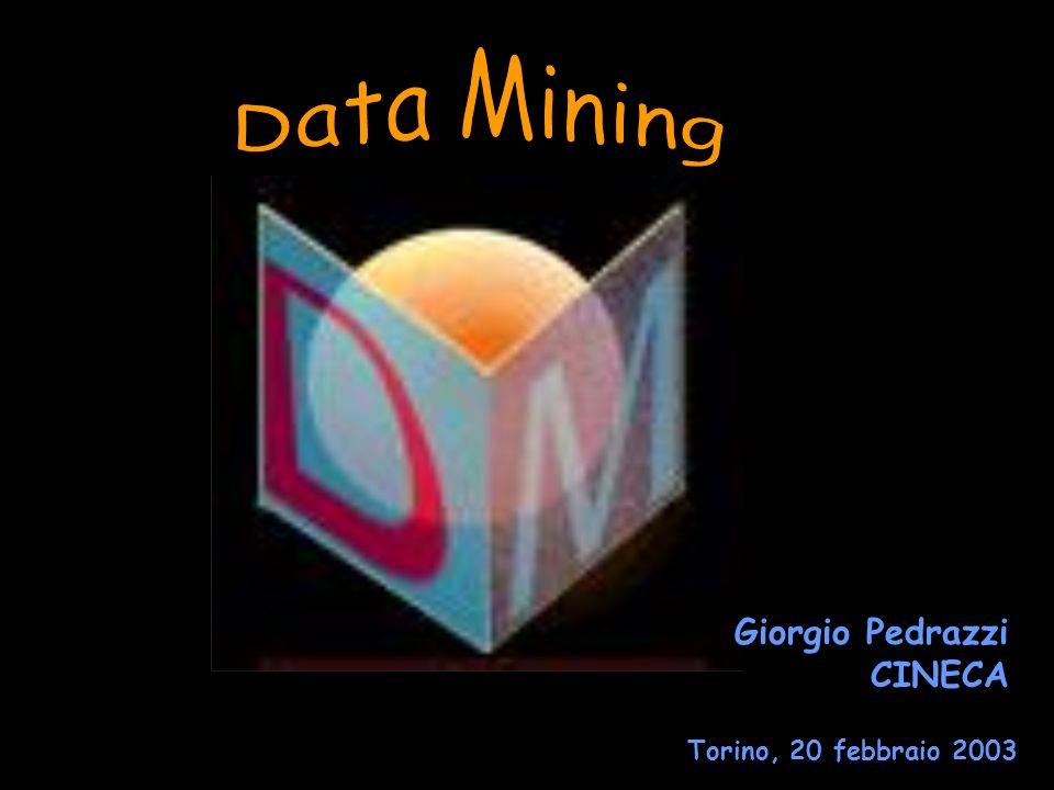Giorgio Pedrazzi CINECA Torino, 20 febbraio 2003