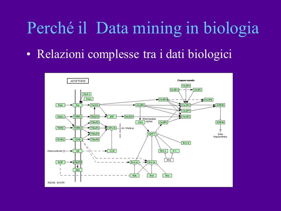 Relazioni complesse tra i dati biologici Perché il Data mining in biologia