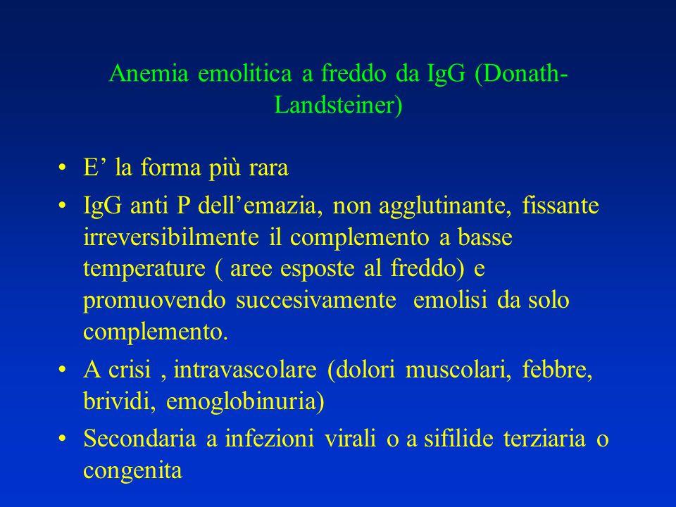 Anemia emolitica a freddo da IgG (Donath- Landsteiner) E la forma più rara IgG anti P dellemazia, non agglutinante, fissante irreversibilmente il comp