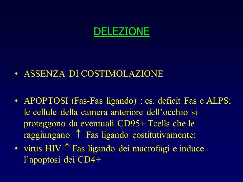 DELEZIONE ASSENZA DI COSTIMOLAZIONE APOPTOSI (Fas-Fas ligando) : es. deficit Fas e ALPS; le cellule della camera anteriore dellocchio si proteggono da