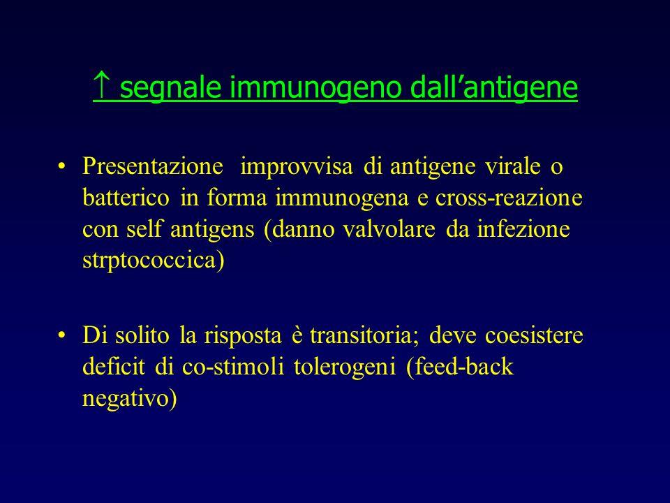 segnale immunogeno dallantigene Presentazione improvvisa di antigene virale o batterico in forma immunogena e cross-reazione con self antigens (danno