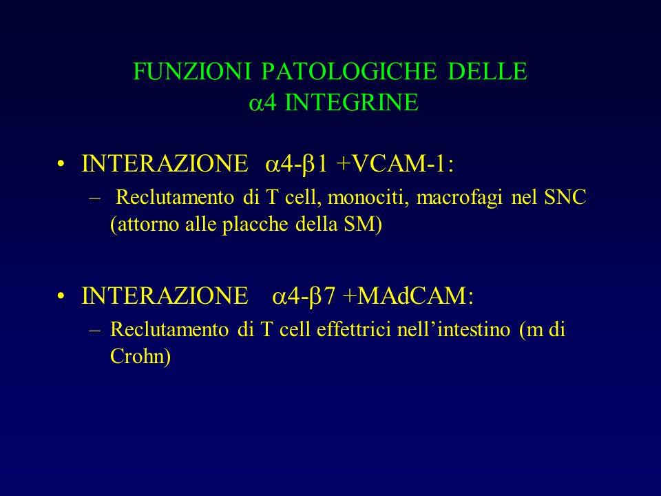 FUNZIONI PATOLOGICHE DELLE 4 INTEGRINE INTERAZIONE 4- 1 +VCAM-1: – Reclutamento di T cell, monociti, macrofagi nel SNC (attorno alle placche della SM)