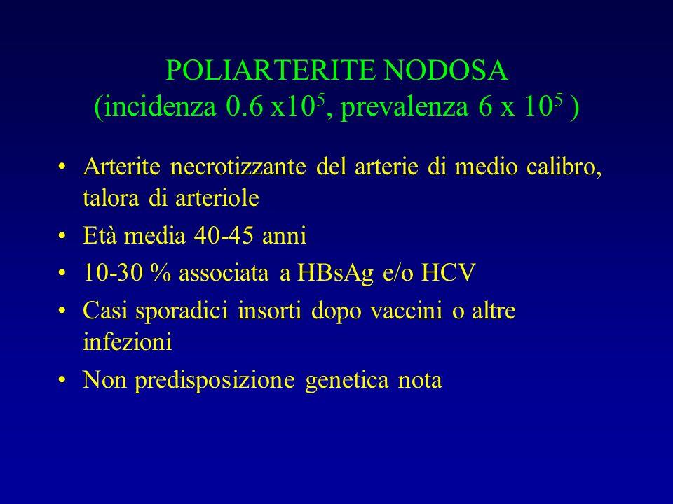 POLIARTERITE NODOSA (incidenza 0.6 x10 5, prevalenza 6 x 10 5 ) Arterite necrotizzante del arterie di medio calibro, talora di arteriole Età media 40-